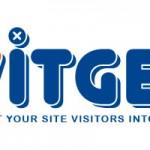 Проект Witget попал в топ-10 стартап-проектов 2013 года по версии Forbes