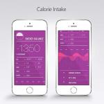 Фитнес-браслет HealBe провел успешную кампанию на Indiegogo