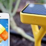 Edyn – монитор, сообщающий садоводам об уровне влажности и температуры