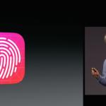 PayPal планирует запустить на iPhone авторизацию через Touch ID