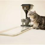 Кормушка Bistro умеет узнавать кота