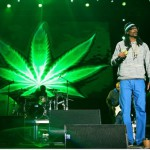 Рэпер Snoop Dogg создал фонд для марихуанных стартапов