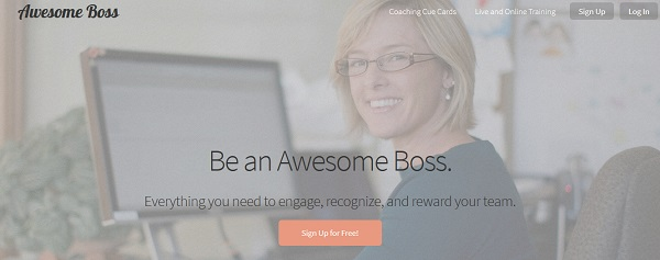 Awesome Boss
