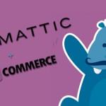 WooThemes и WooCommerce теперь принадлежат компании Automattic