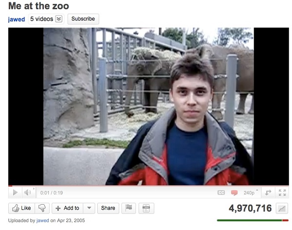 Youtube zoo