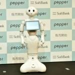Японцам запретили сношаться с роботами