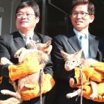 Возрождением мамонта занялась корейская лаборатория по клонированию