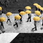 Зонтики напрокат из вендинговых автоматов