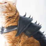 Граф-кот получил свои доспехи из 3D принтера