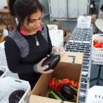 Доставка деформированных продуктов для борьбы с пищевыми отходами