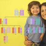 Алгоритм, превращающий ДНК в узоры
