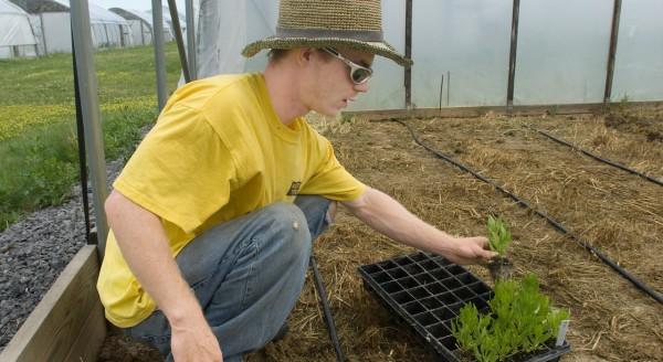 1280x700xyaardvark-1-p2p-gardening-help-student-finance.jpg.pagespeed.ic.gpvxVhIa4p