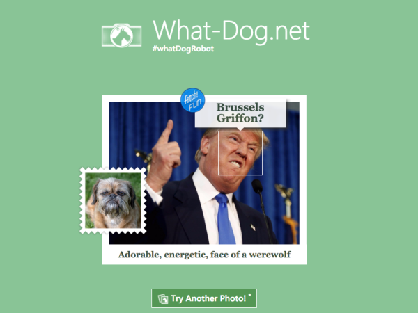 donald-trump-is-a-brussels-griffon-note-the-description-includes-face-of-a-werewolf.jpg