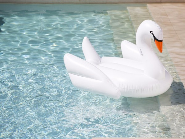 inflatableswan
