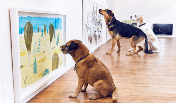 more-than-dominic-wilcox-art-exhibition-for-dogs
