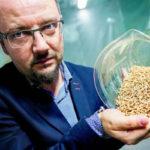 Насекомые как биотопливо будущего