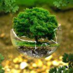 13 интересных азиатских стартапов экологически чистых технологий: часть 2