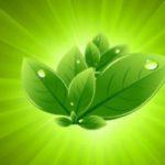 13 интересных азиатских стартапов экологически чистых технологий: часть 3